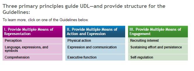 Универсальный дизайн обучения (UDL — Universal Design for Learning)